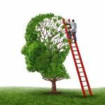 Перепрошивка мозга: семь научных подходов к освоению английского языка